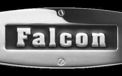 Master Falcon Badge